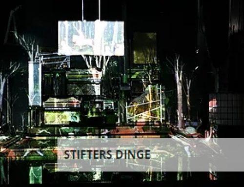 STIFTERS DINGE